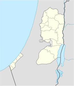 domain names in palestine