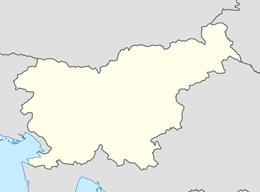 domain names in slovenia