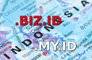 how to register .biz.id domain with local proxy service
