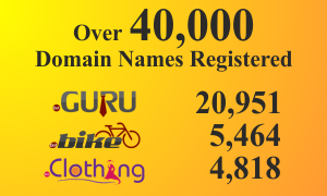 Over-40-000-Domain-Names-Registered