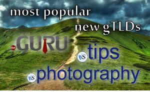 Popular-new-gTLDs