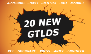 20 new gTLDs approved