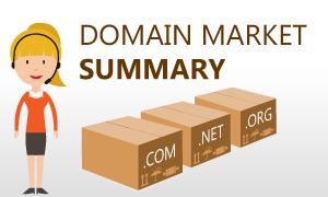 Domain Market Summary