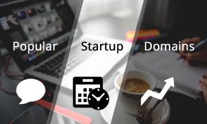 Popular Startup Domains